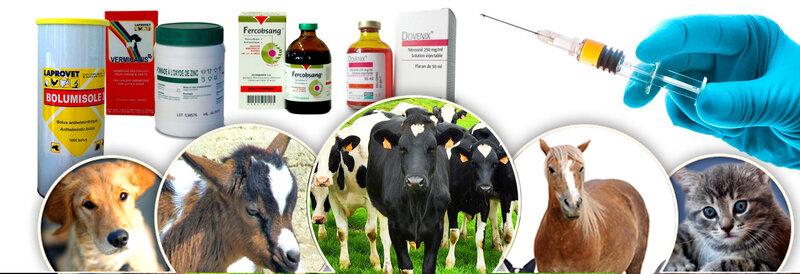 Pharmacie Agrovet Sarl